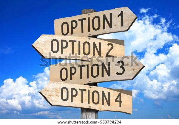 option - Traduzione in italiano - esempi inglese | Reverso Context