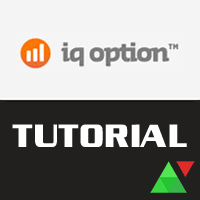 Come si usa IQ Option nella pratica
